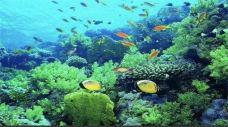 都匀金图海洋公园-都匀-AIian