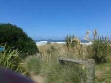 Brighton Beach-Dunedin City