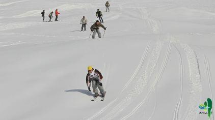 大明山高山滑雪134461 (34)