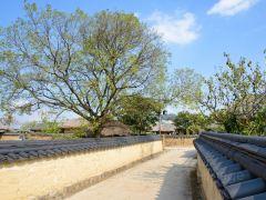 韩国佛教文化圣地,安东访古2日游