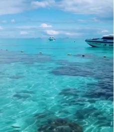 洛克岛-可可卡丹-世界美食游走达人