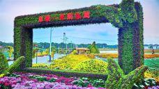 采菊东篱景区-湖州