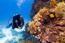 巴厘岛-xiaoy216