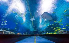 海底隧道-天津