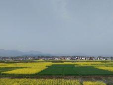 朱鹮自然保护区-洋县-山在穷游
