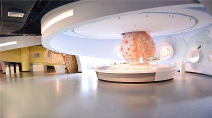 贝壳博物馆7