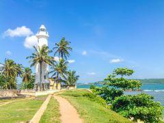 斯里兰卡紧凑8日游