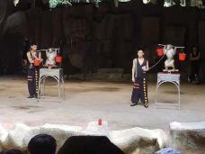 猕猴杂技表演-陵水
