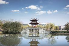 南江公园-萧山区