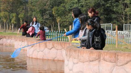 杭州海皇星生态乐园135704 (10)