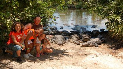 奥兰多鳄鱼岛1