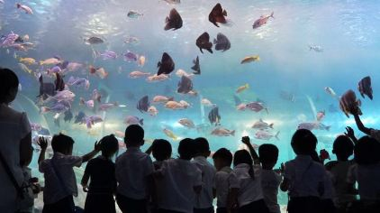 海立方海世界