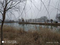 东明黄河国家湿地公园动物园-东明-M31****9758