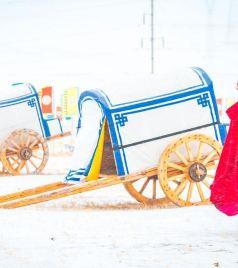 西乌旗游记图文-冬季的锡林郭勒,来自草原的一场盛会
