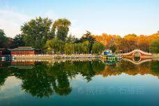 安阳人民公园-安阳-doris圈圈