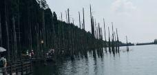 月亮湖-明月山-zhangfeifei