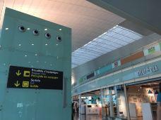 阿姆斯特丹史基浦机场免税店-阿姆斯特丹-青青翠竹