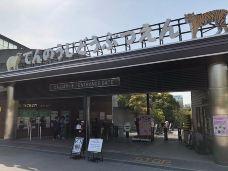 天王寺动物园-大阪-M35****9348