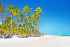 巴瓦罗海滩-蓬塔卡纳-尊敬的会员