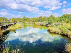 赏火山岩、品冷泉,五大连池精华一日游