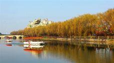 上海-doris圈圈