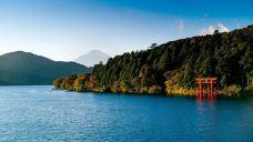 芦之湖-箱根-M30****2342