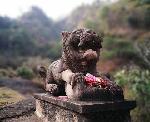 来自小花猫大笨熊的点评,小花猫大笨熊拍摄于undefined