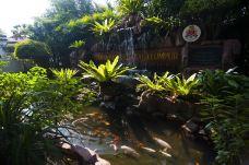 吉隆坡飞禽公园-吉隆坡-doris圈圈