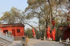 红山公园大佛寺-乌鲁木齐-天羽博士