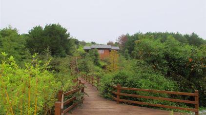 汀江国家湿地公园 (19)