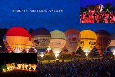 邯郸国际电子音乐狂欢节-邯郸-AIian