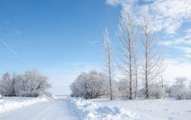 长春一周内天气预报_长春天气预报,历史气温,旅游指数,长春一周天气预报【携程攻略】