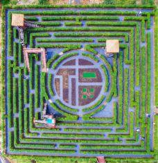 植物梦幻迷宫-乳源