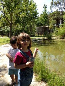 Jardin Botanico Celestino Mutis-罗塔