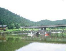 白马山森林公园-遂昌-137****4573