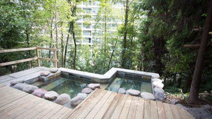 森林温泉 (3)