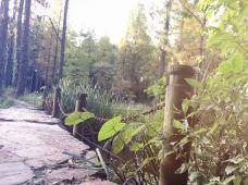 Chagrin River Park-东湖-阿里巴第二代