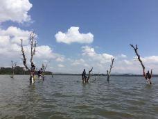 奈瓦沙湖-纳库鲁-gz当地向导伊妹儿