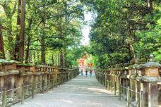 春日山原始林-奈良-doris圈圈