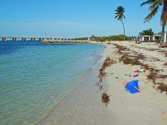 佛罗里达自驾10日游