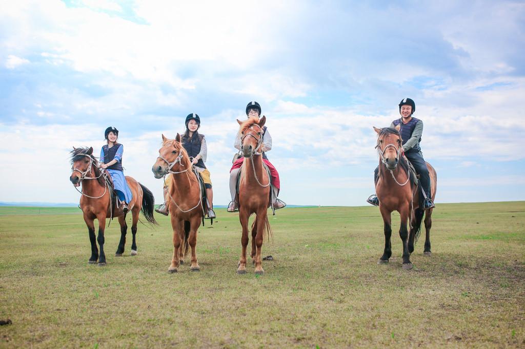 骑姐姐免费成人网站_壁纸 草原 动物 马 骑马 桌面 1024_682
