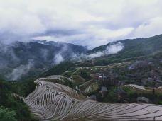 九龙五虎观景点-龙脊梯田-东北行者123