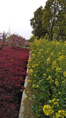 白河湿地公园-新野-青山绿水82
