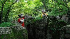 盆景石区-张家界-AIian