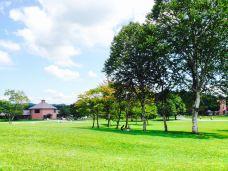 小岩井农场牧场园-雫石町