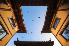 护国寺-温州-尊敬的会员