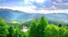 冶力关国家森林公园-甘南