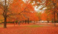 湛江红树林国家级自然保护区-雷州-用户45939