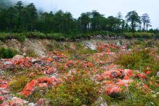 中国红石公园-海螺沟-牛奶海