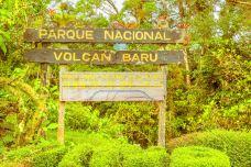 Volcan Baru National Park-博克特-doris圈圈